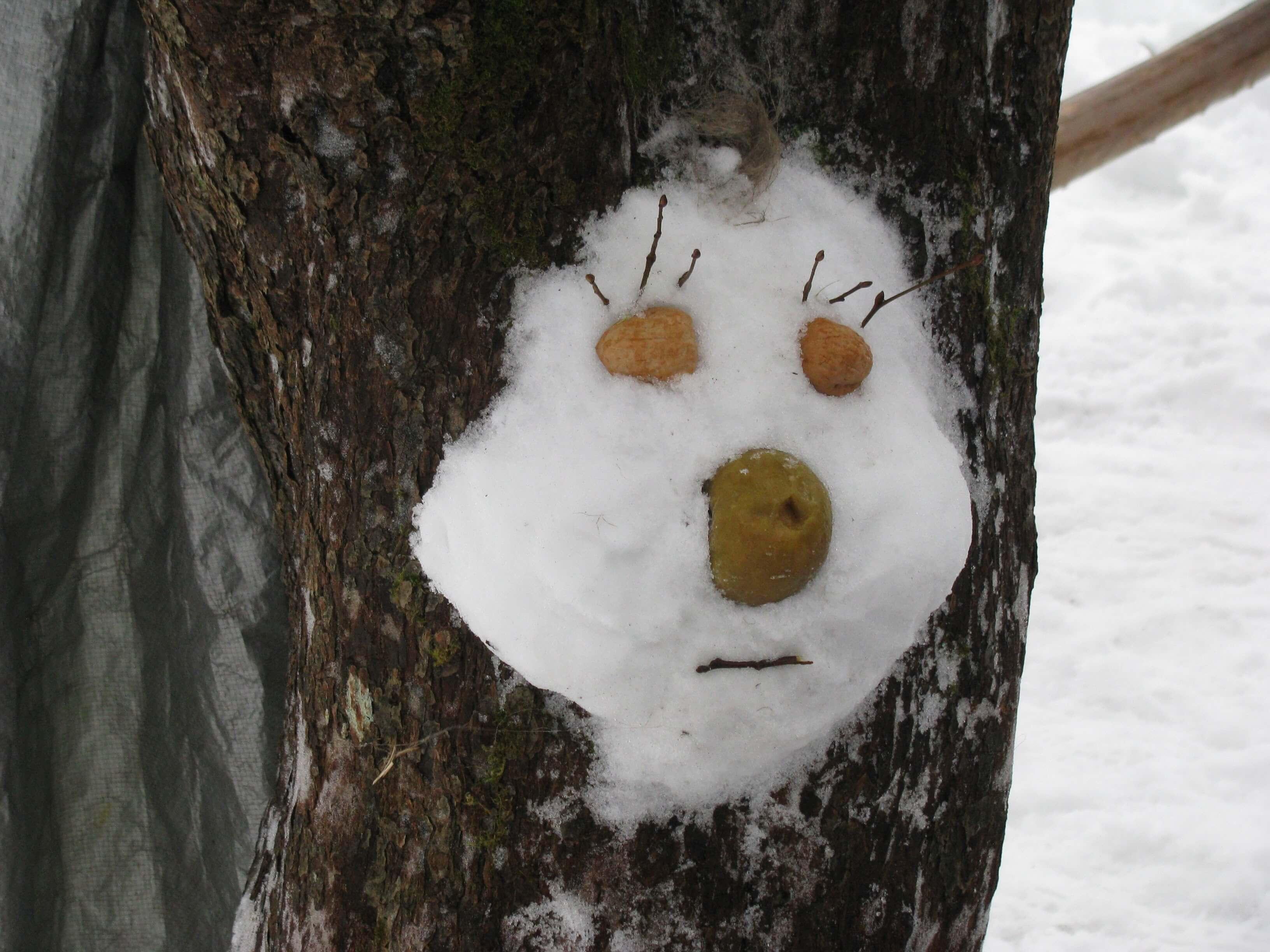 Sniego kaukes